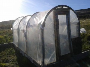 polytunnel door on