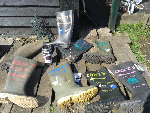 wellie trail