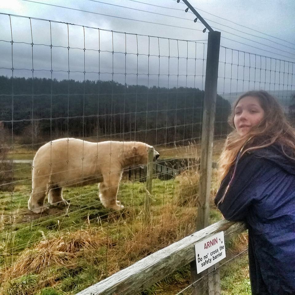 s and polar bear